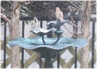 birdfeeder01